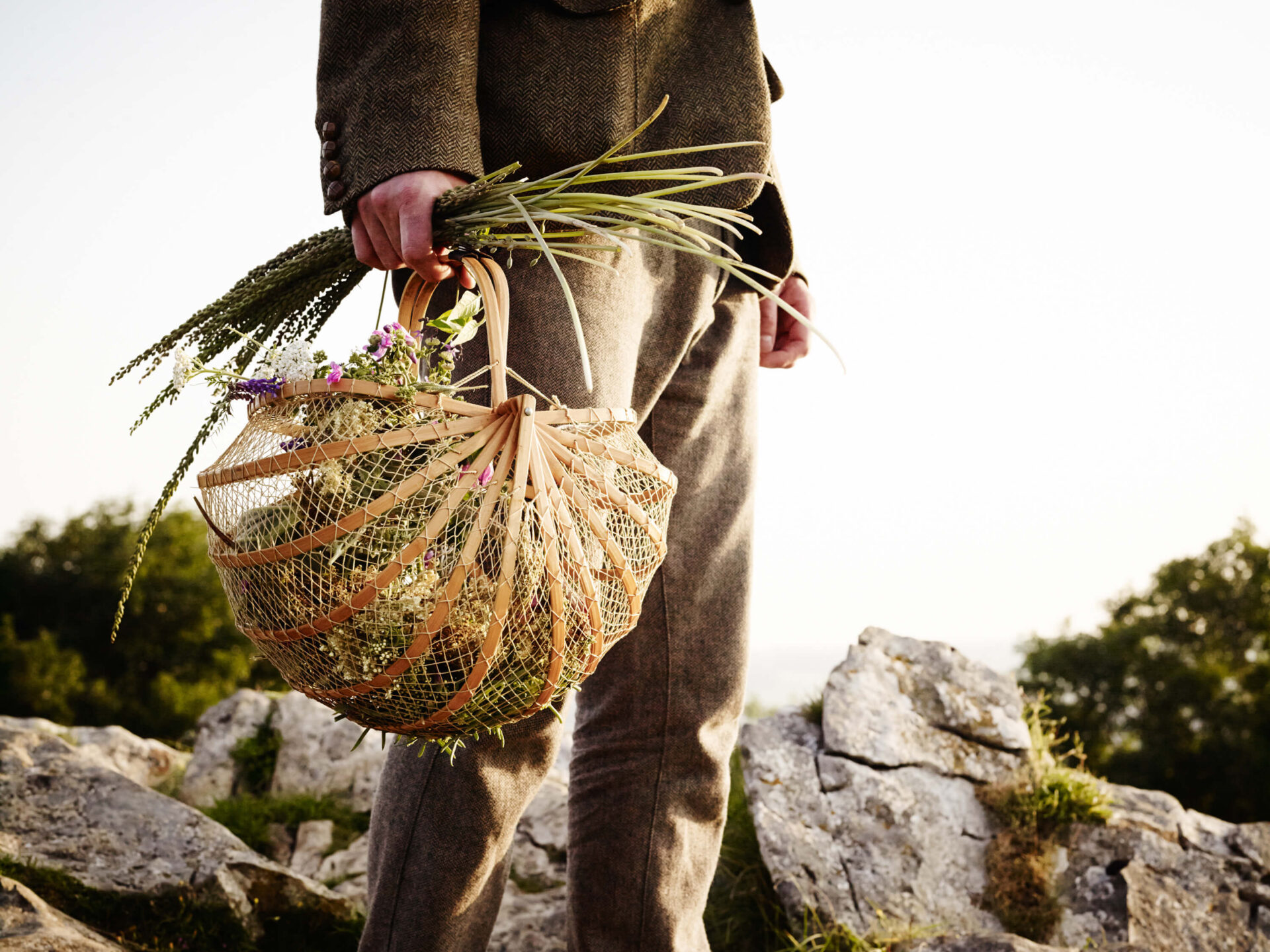 Foraging The Mendips