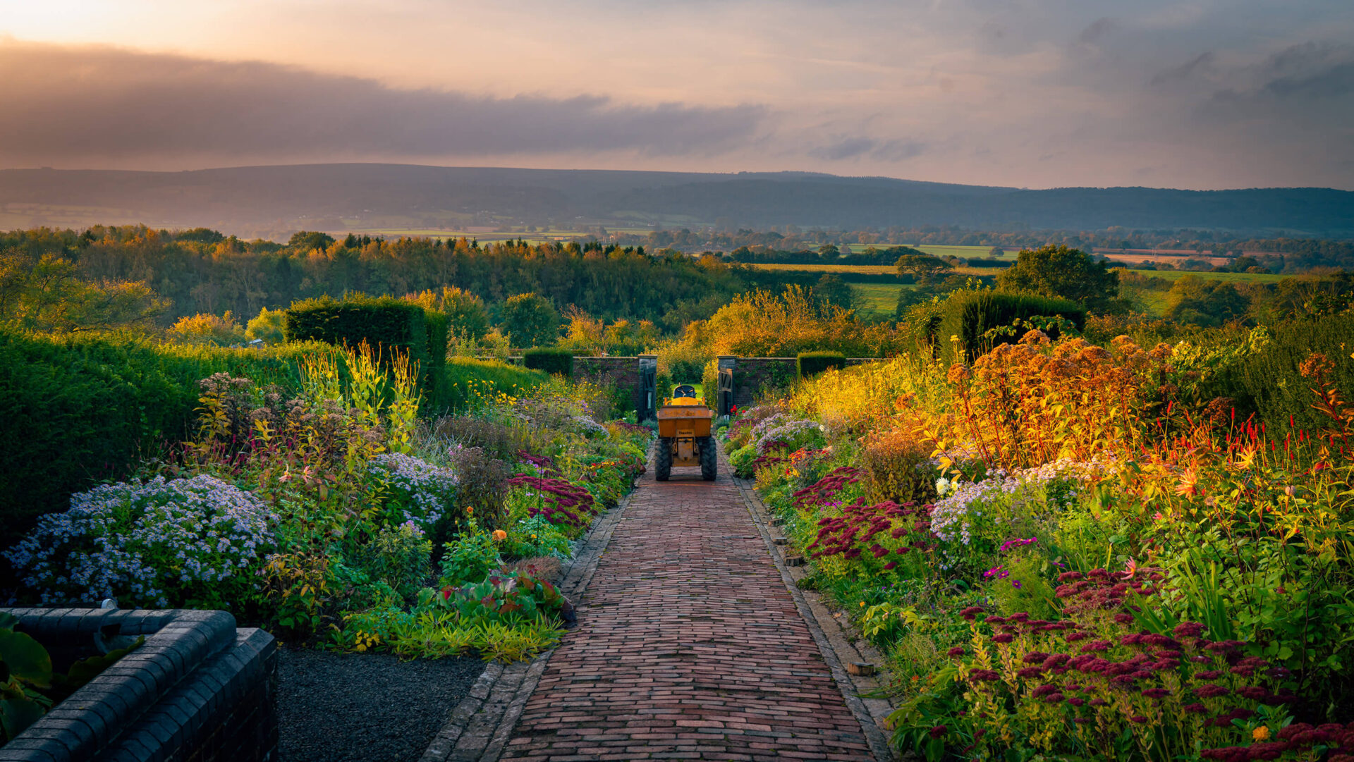 Sunrise Over The Herbacious Beds